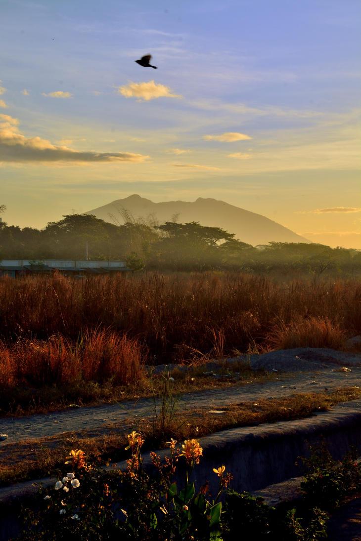 Sun rise beauty by TomKilbane