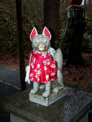Happy little Inari fox
