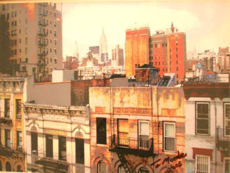 Lost in New York ( from St. Marks street) North