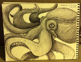 Octopus by czoliveira