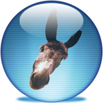 An Icon for your donkey