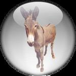 Silver Aqua eMule-eDonkey Icon