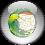 Silver Aqua Sunbird Icon
