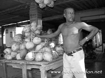 VENEZOLANIDAD: AGUA DE COCO