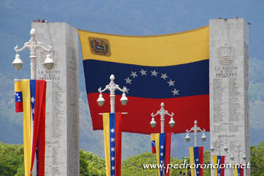 LA NACION A SUS PROCERES by pedrorondon