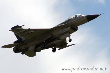 F-16 Fuerza Aerea Venezolana 2 by pedrorondon