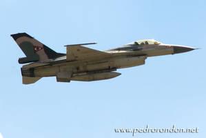 F-16 Fuerza Aerea Venezolana 3