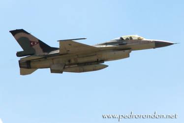 F-16 Fuerza Aerea Venezolana 3 by pedrorondon
