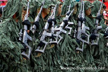 Fuerzas Especiales Venezuela by pedrorondon