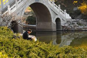 Parque Tuanjiehu, Beijing by pedrorondon