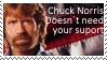 Stamp Chuck Norris by Mellx93