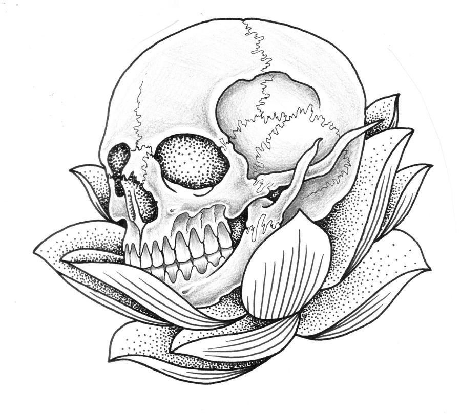 Lotus And Skull By Jontoogood On Deviantart
