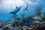 Underwater scene by Zyari