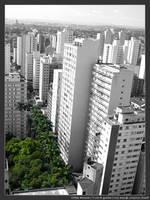 Urban Amazon by micahgoulart