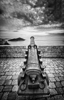 Cannon Dracarys