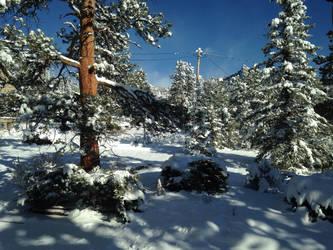 Spring Snow by longrider1952
