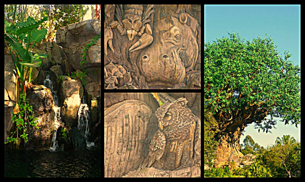 Animal Kingdom by AllyCat1994