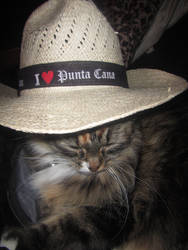 Bella Loves Punta Cana by AllyCat1994