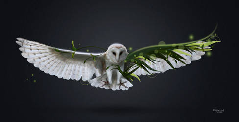 Owl by SpringDA
