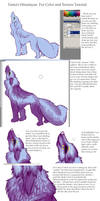 Fur color and texture Tutorial
