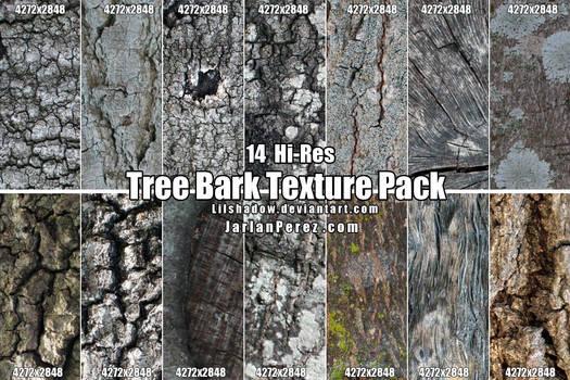 Hi-Res Tree Bark Texture Pack