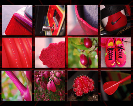 The Color of Red