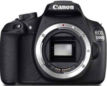Buy dslr camera in bangalore dating. lion maker and paige the panda dating advice.