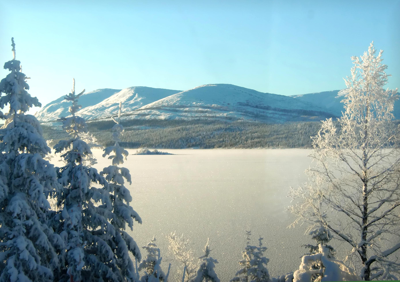 http://fc00.deviantart.net/fs71/f/2011/070/e/3/winter_landscape_by_navanna-d3bds8x.jpg