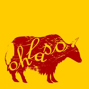 OhLaso's Profile Picture