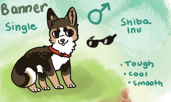 Banner the shiba by Magicpawed