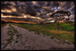 HDR Sunset Track