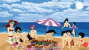 Dragon Ball Z Brief and Son family moment