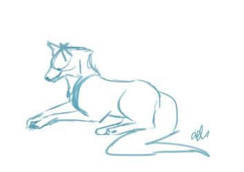 sketchy by happymoonwolf