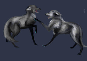 concept 5 by happymoonwolf