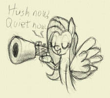 Fluttershy and her silencer