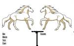 Free Reference - Stallion