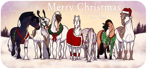 MERRY CHRISTMAS AND A HAPPY 2015!