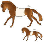 Aurumion Horse - Belted by Cat-Bells