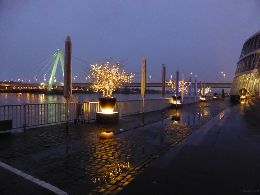 Night On The Rhine by HeidiK1