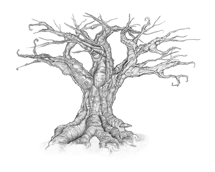 How To Draw A Creepy Tree Step By Apps Directories
