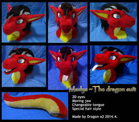 Madys the dragon suit by dragon-x2