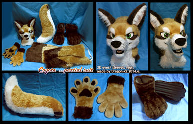 Coyote half suit by dragon-x2