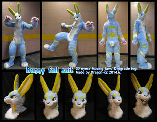 Bunny/ rabbit full suit by dragon-x2