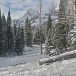 Winter 4 Premade Background