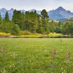 Garden lake background