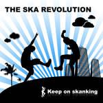The SKA revolution