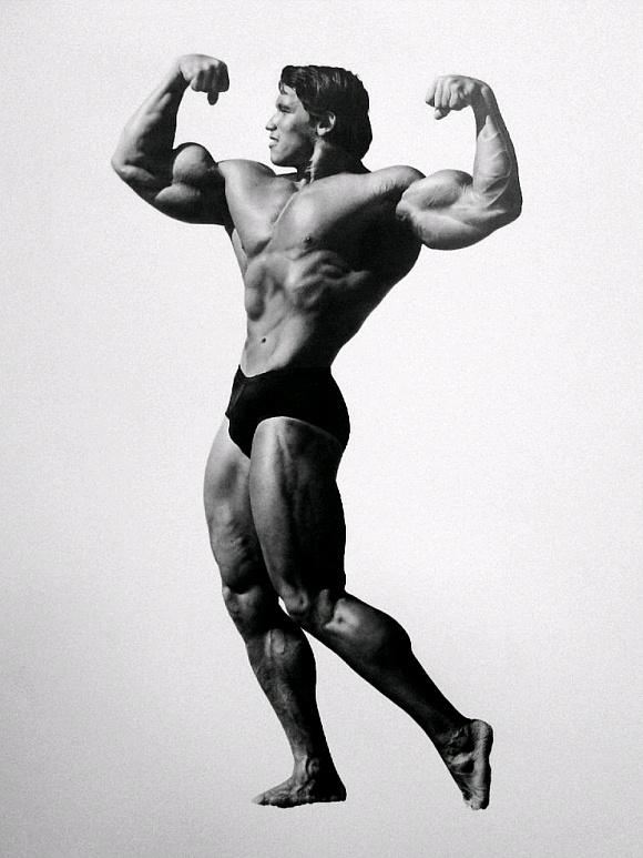Arnold Schwarzenegger drawing by sharppower on DeviantArt