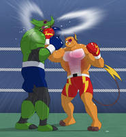 Volt vs Zamrud by TheBoxerZamrud