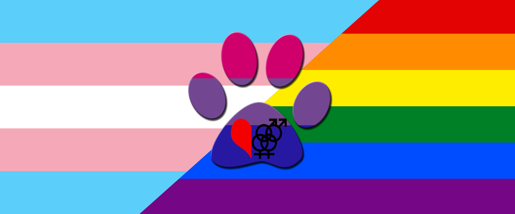 Homosexual flag photo