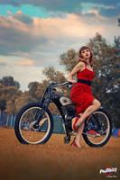 Sentimental Bike